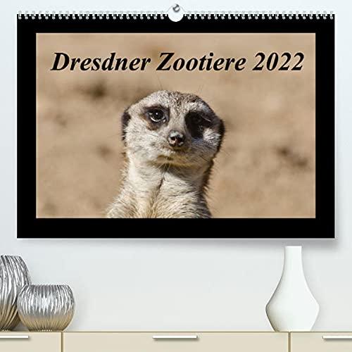 Dresdner Zootiere 2022 (Premium, hochwertiger DIN A2 Wandkalender 2022, Kunstdruck in Hochglanz): Überblick über Tiere im Dresdner Zoo (Monatskalender, 14 Seiten ) (CALVENDO Tiere)