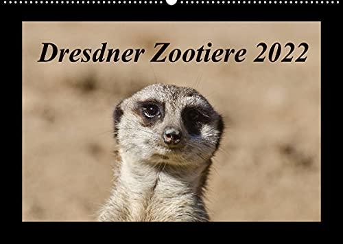 Dresdner Zootiere 2022 (Wandkalender 2022 DIN A2 quer)