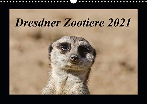 Dresdner Zootiere 2021 (Wandkalender 2021 DIN A3 quer)