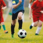 sportverein fussball