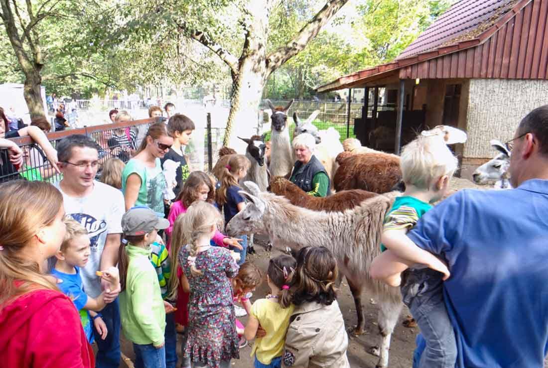 Deutscher Zootag Hoyerswerda