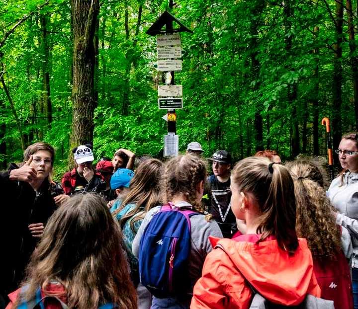 Wanderweg zur Burg Valdstejn