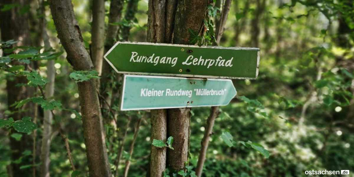 Granitabbaumuseum Koenigshainer Berge lehrpfad
