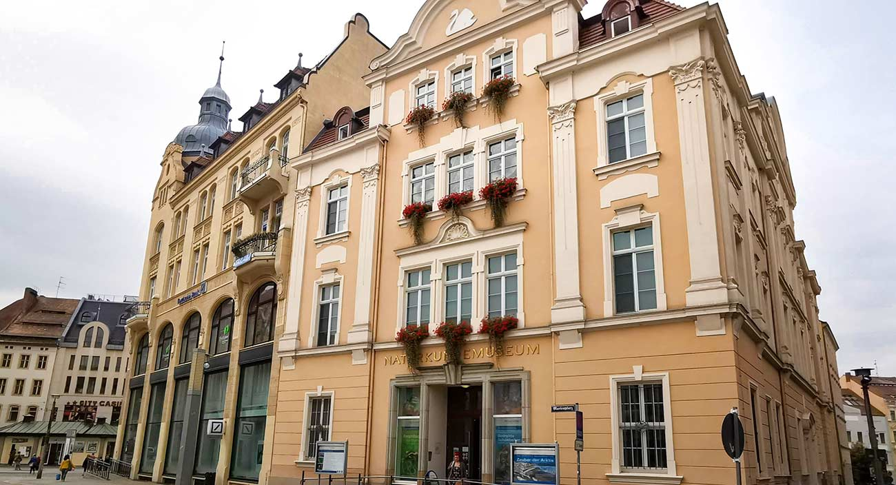 senckenberg museum goerlitz