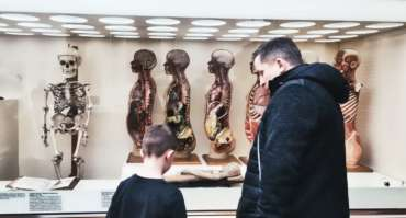 Deutsche Hygiene-Museum in Dresden