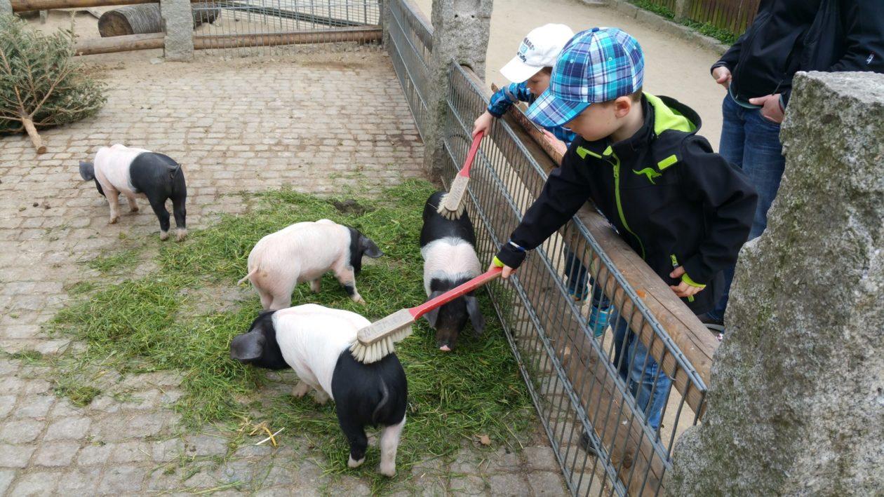 Kinder im Tierpark Göritz