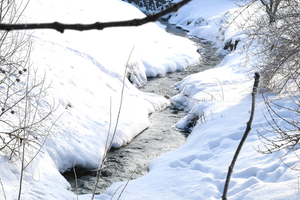 Koenigshainer Berge mario foerster winter 0020 Hintergrund
