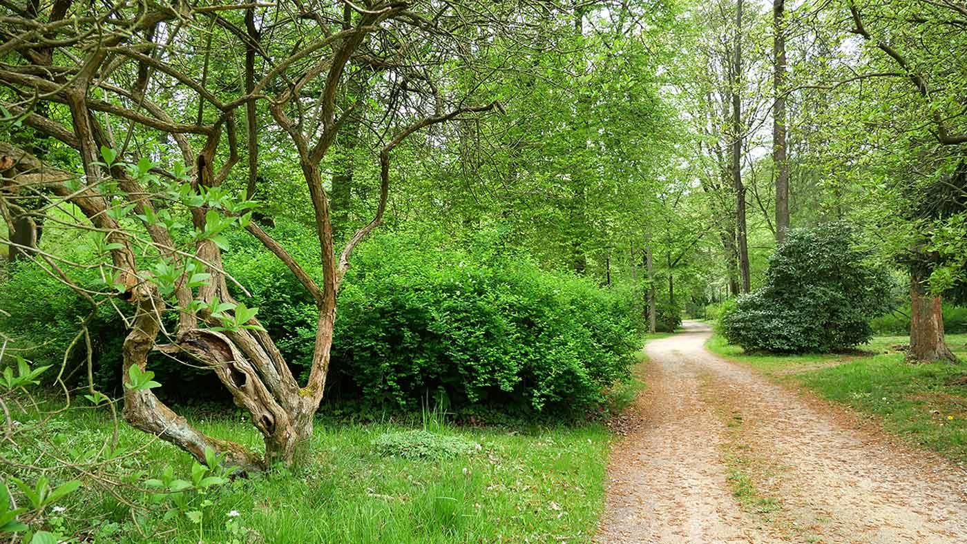 Stadtpark Rothenburg Oberlausitz