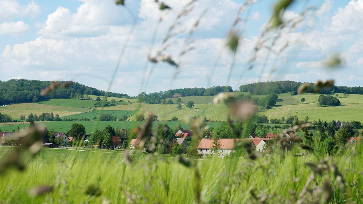 Königshain, Oberlausitz